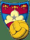 Gubbio_calcio logo